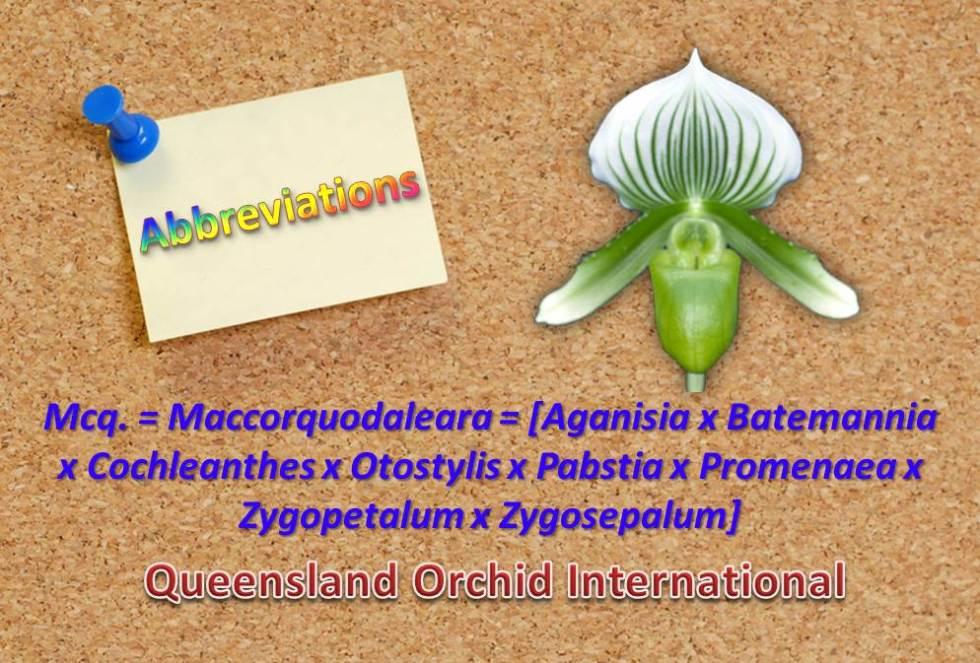 Queensland Orchid International Abbreviations
