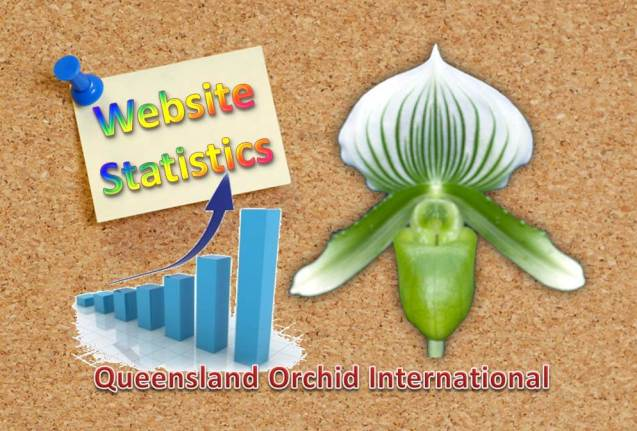 Queensland Orchid International Website Statistics