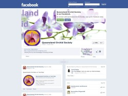 Queensland Orchid Society on Facebook