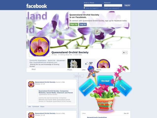 Queensland Orchid Society on Facebook (37 Likes) with Emblem