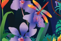 Orchid in Vector Illustrations and Web Graphics
