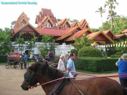 Thailand, the Land of a Thousand Buddhas (10)