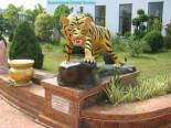 Thailand, the Land of a Thousand Buddhas (9)