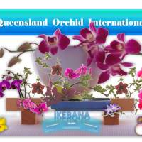 Ikebana Lessons with Orchids: Minimalist Flower Arrangement 🎍💐