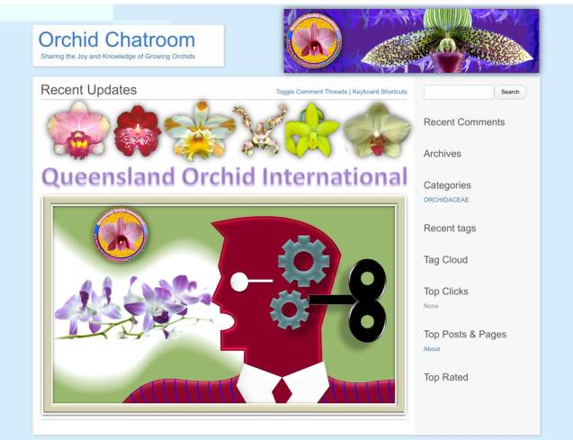 Queensland Orchid International Chatroom