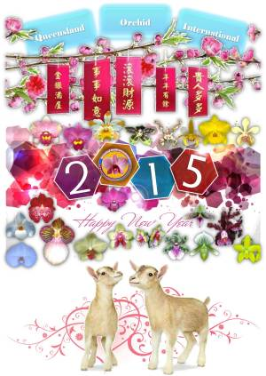 Queensland Orchid International Happy Chinese New Year 2015