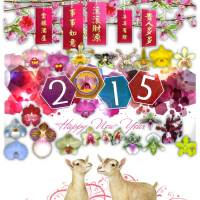 ✾ Blue Orchids and Chinese New Year of 2015 🐏🐐🐑