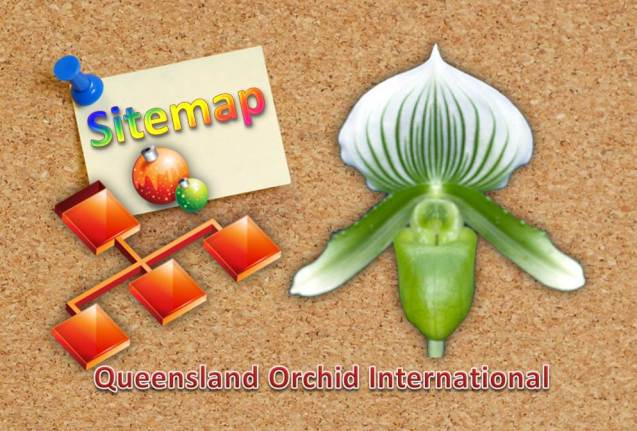 Queensland Orchid International Sitemap