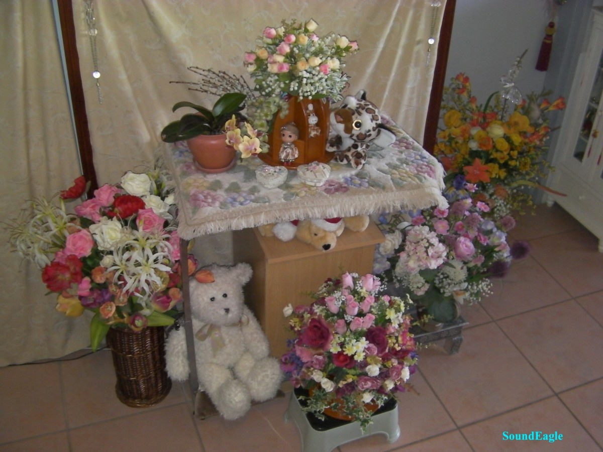 SoundEagle's Floral Display on Valentine's Day 2015 (10)