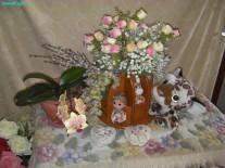 SoundEagle's Floral Display on Valentine's Day 2015 (2)