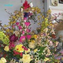 SoundEagle's Floral Display on Valentine's Day 2015 (27)