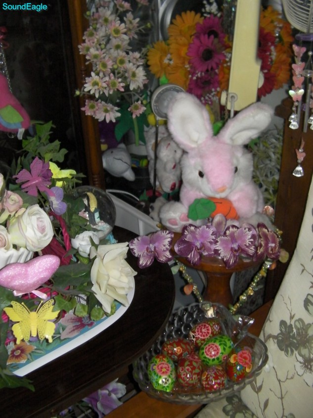 Queensland Orchid International Happy Easter (3)