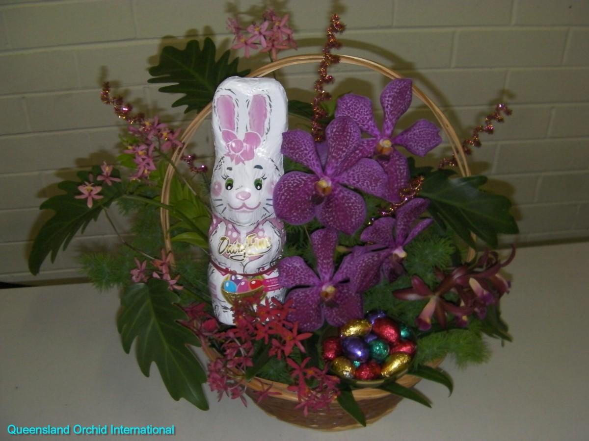 Queensland Orchid International Happy Easter (4)