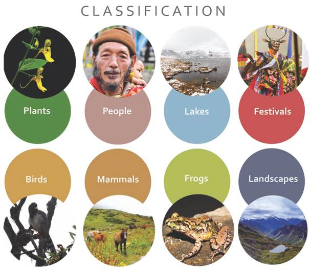 Framed Himalaya Classification