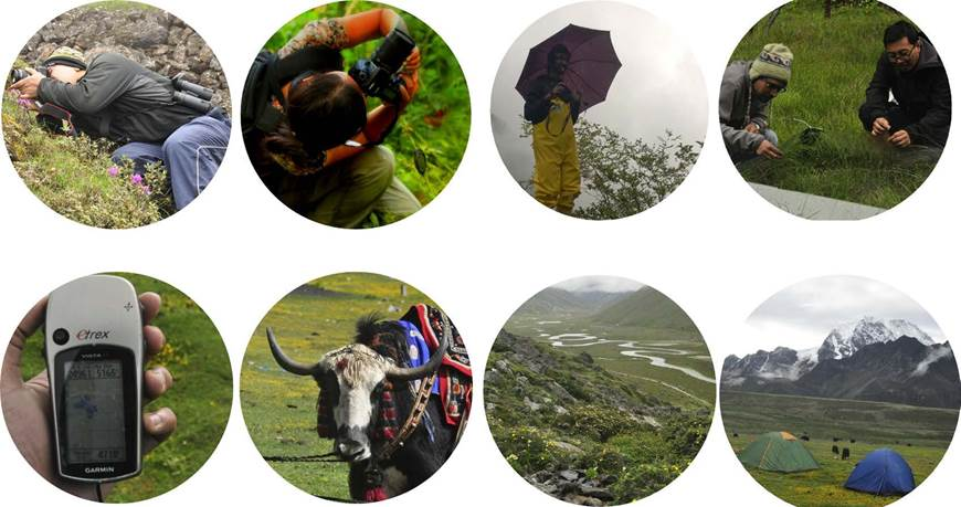 Framed Himalaya sample image spread