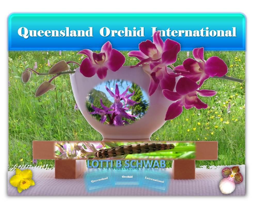Lotti B Schwab at Queensland Orchid International