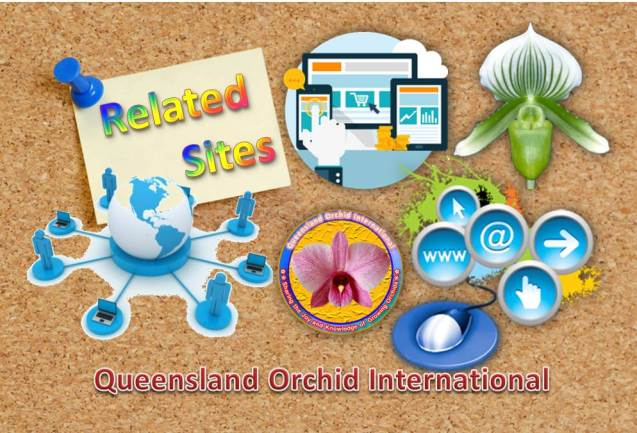 Queensland Orchid International Related Sites