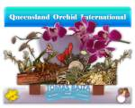 Tomas Bajza at Queensland Orchid International (1)