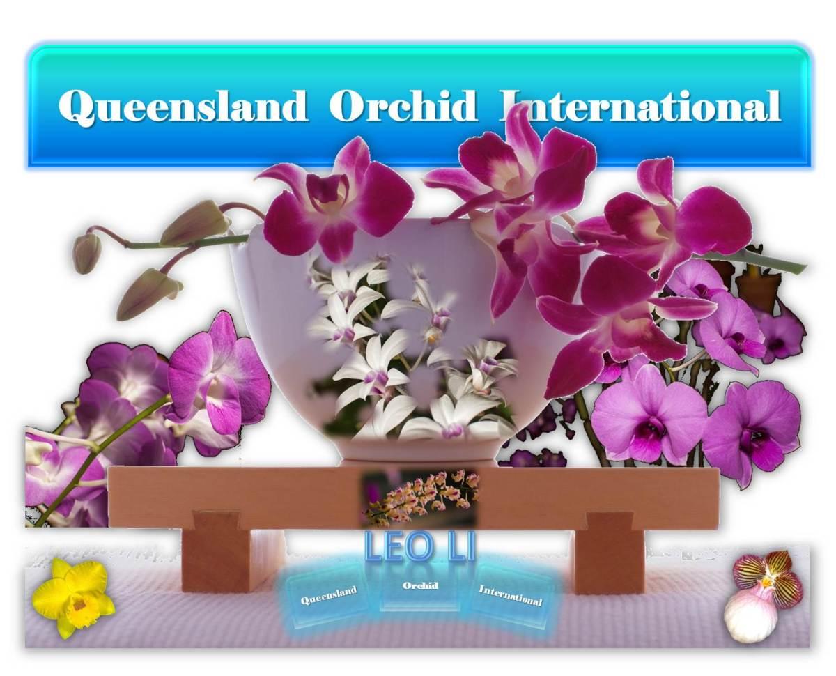 Leo Li at Queensland Orchid International