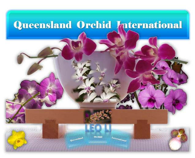 Leo Li at Queensland Orchid International