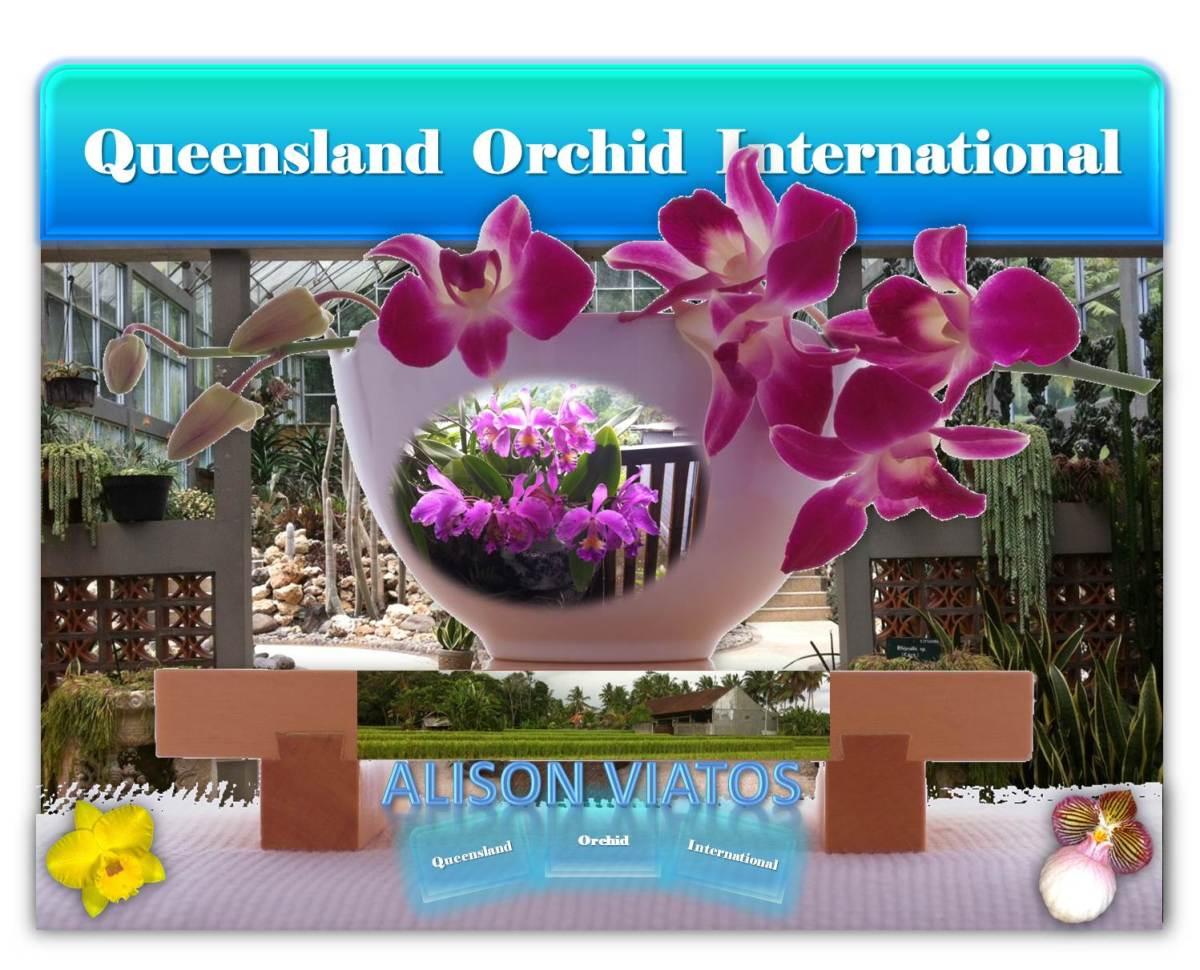 Alison Viatos at Queensland Orchid International