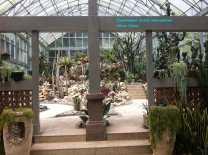 Botanical Gardens Cacti House (2)