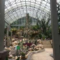 Botanical Gardens Cacti House (3)
