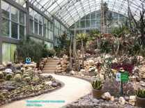 Botanical Gardens Cacti House (4)