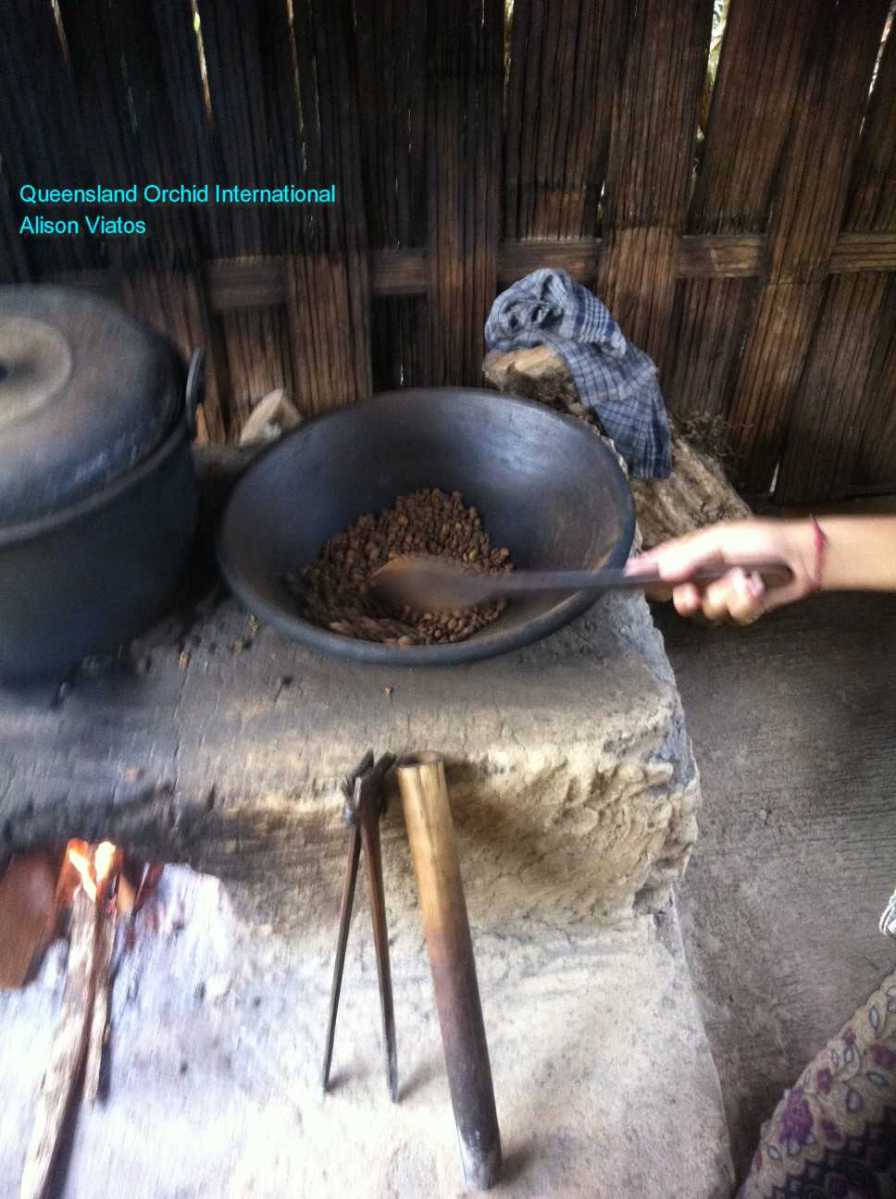 Luwak Coffee Production at Bali (3)