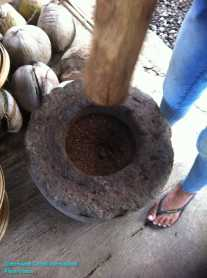 Luwak Coffee Production at Bali (4)