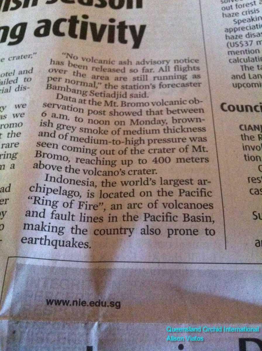 Mt Bromo Volcanic Activity