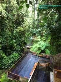 Resort Nestled on a Hillside in the Jungle (4)
