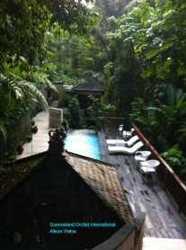 Resort Nestled on a Hillside in the Jungle (5)