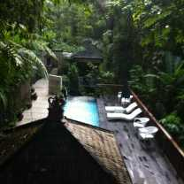 Resort Nestled on a Hillside in the Jungle (5)