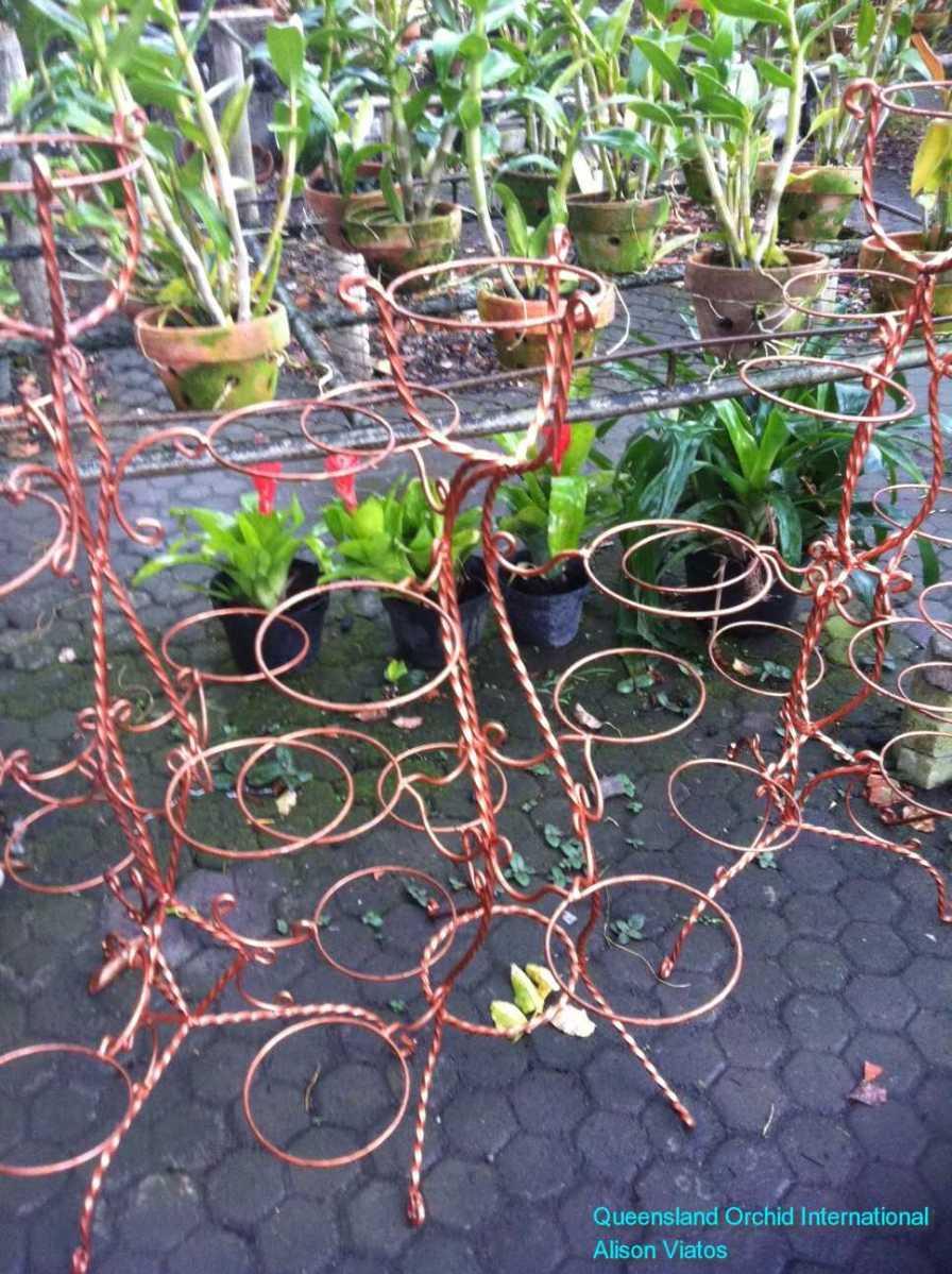 Wire Pot Holder in Nursery at Sanur, Bali.JPG (1)